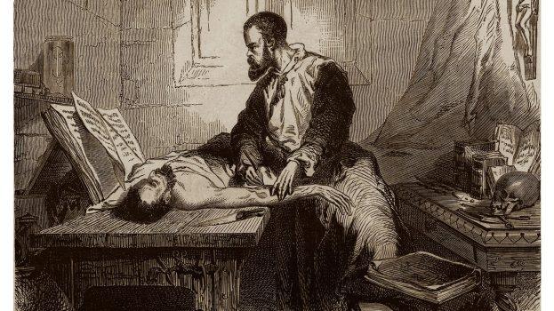 A modern anatómia atyja