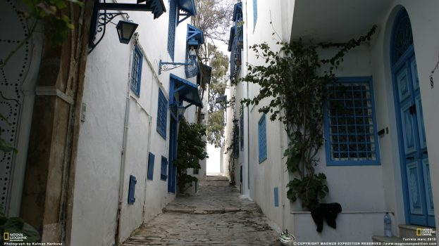 Tuniszban a Magnus Expedíció