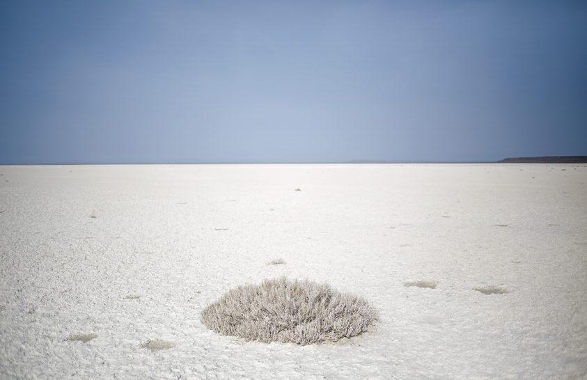 Haldokló Aral