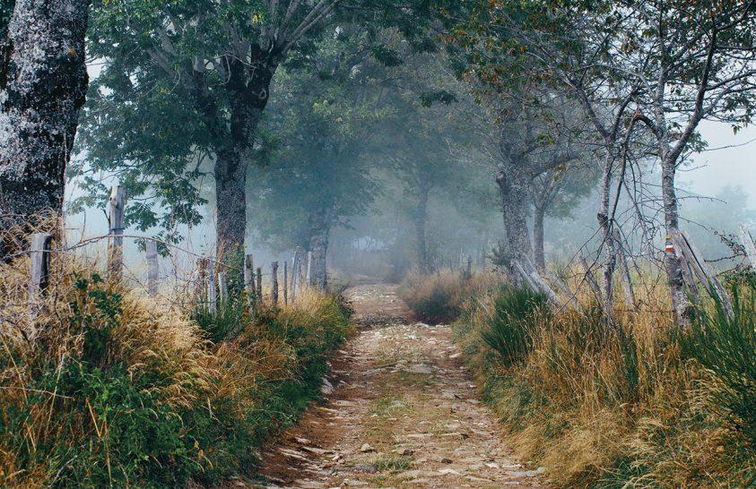 El Camino – Szent Jakab útján