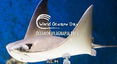 Óceánok világnapja a Nyíregyházi Állatparkban