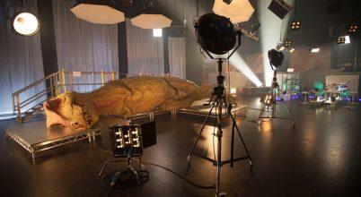 T. rex ízekre szedve