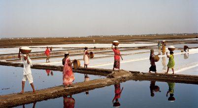 A sómenet nyomában Gandhi Indiájában
