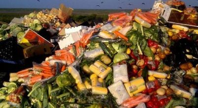 Az élelmiszerpazarlás áttekintése