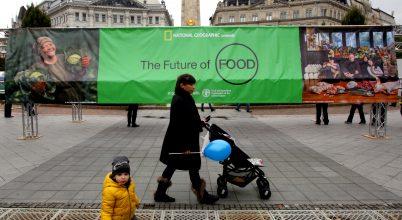 Az élelem jövője