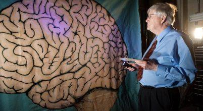 Utazás az emberi agy mélyére