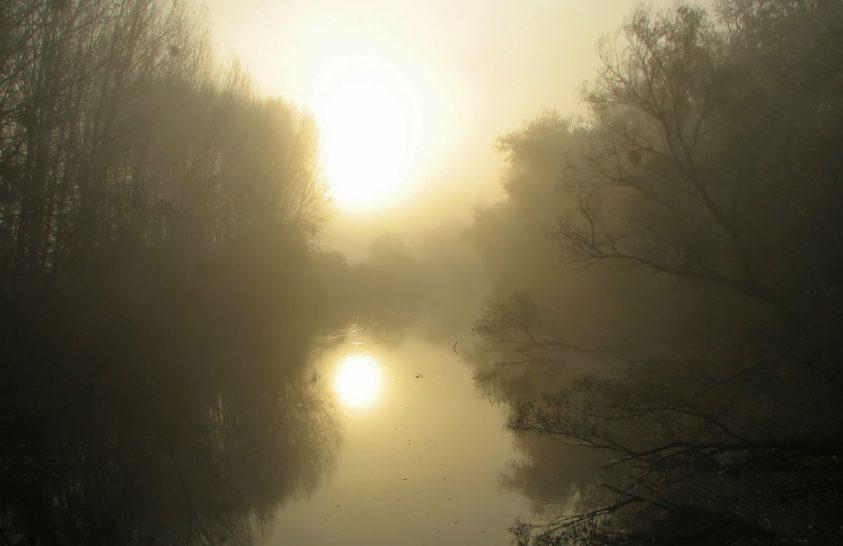Szigetköz és Csallóköz – közös ügy