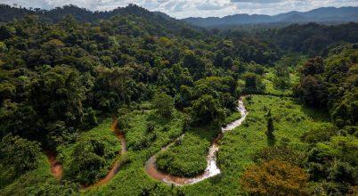 Elkezdődtek az ásatások Hondurasban