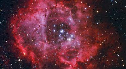 A hónap asztrofotója: Vörös rózsa a téli égen