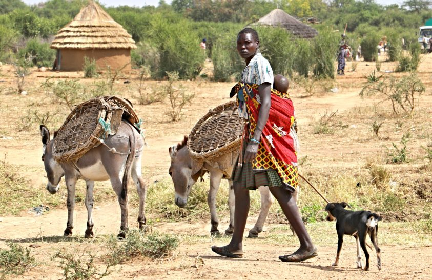 A harcos karamojong törzs és a hegtetoválás