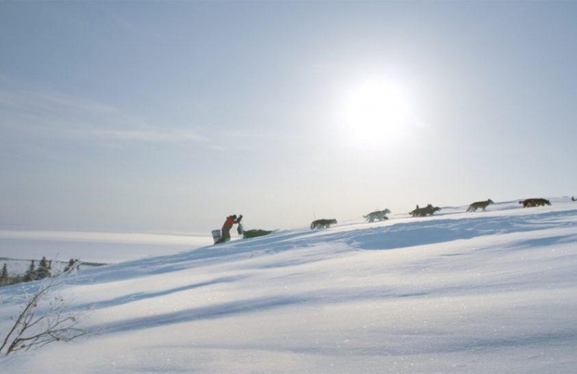Banff Nagydíjas film – 2016