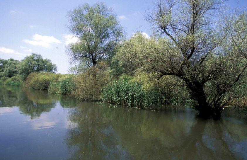Ha a Duna egészséges, a helyi közösségek is jól élnek