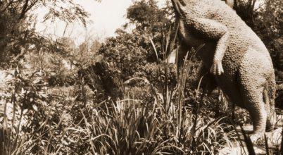 A növényevő dinók sikere fogazatukban keresendő