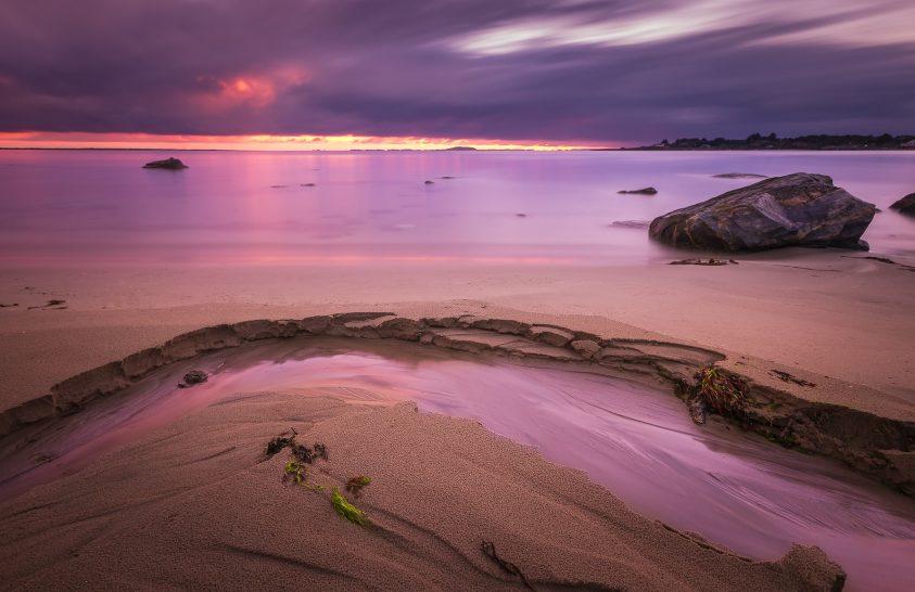 A nap képe: Az utolsó zöld a Földön