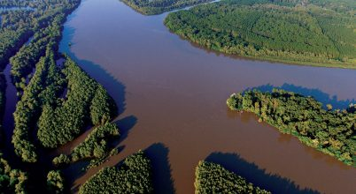 Európai Amazonas