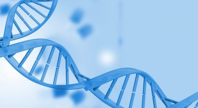 Élethosszig egészségesen – új eredmények a DNS javításban
