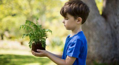 Kit érdekel a természet- és környezetvédelem?