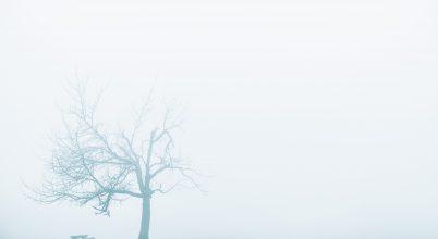 A nap képe: Magány