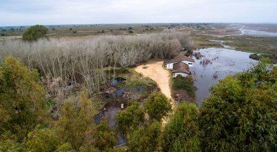 Doñana esélyt kapott a túlélésre