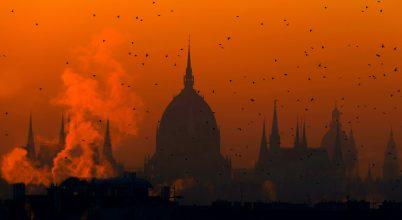 A nap képe: Hajnali hírvivők