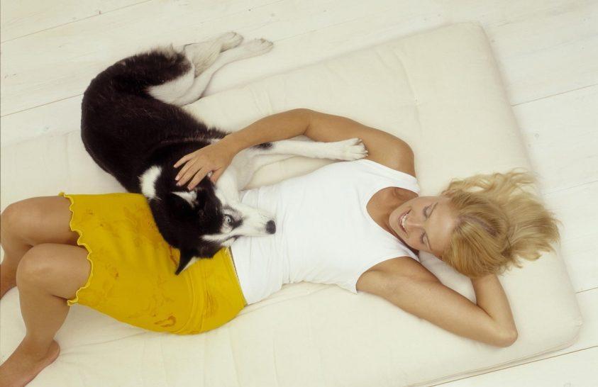 Képesek-e empátiára a családi kutyák?