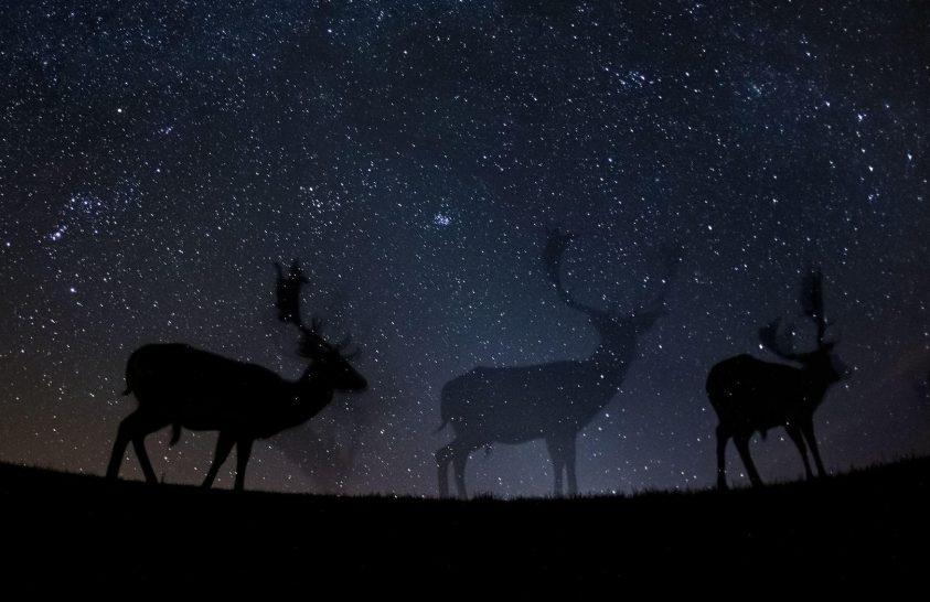 Egyetlen éjszakai fotóban hetek munkája is lehet
