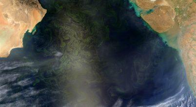 Műholdról is látszik az algavirágzás