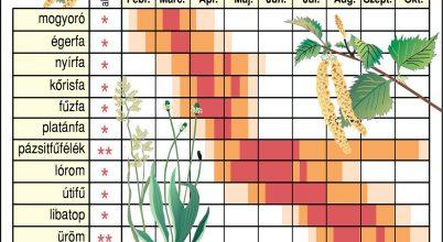 Mi várható pollen ügyben az idén?
