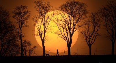 A nap képe: Kutyasétáltatás a lemenő nap fényében