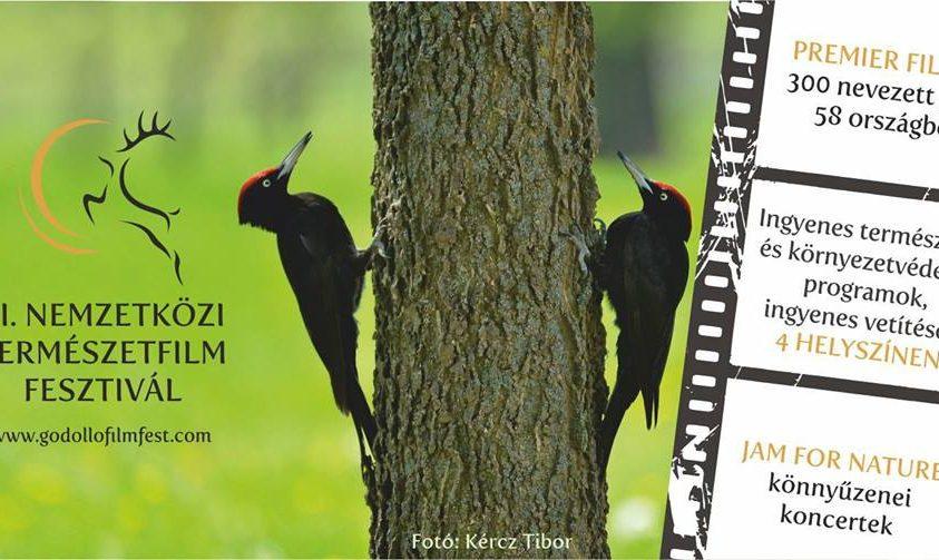 A Gödöllői Nemzetközi Természetfilm Fesztivál díjazottjai – 2017