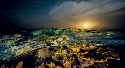 A Karib-tenger koronaékszere