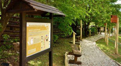 Új tanösvény nyílik a Budakeszi Vadasparkban