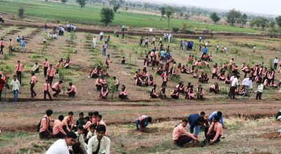 Fél nap alatt 66 millió fát ültettek el Indiában