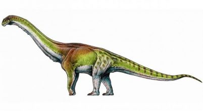 Egy földműves találta meg a világ legnagyobb dinoszauruszát