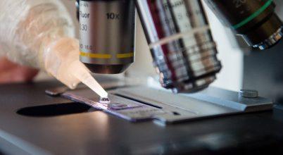 Milliónyi ismeretlen gént találtak az emberi mikrobákban