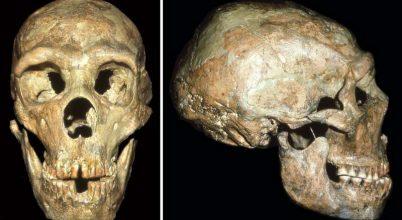 Már a neandervölgyiek is gondoskodtak társaikról