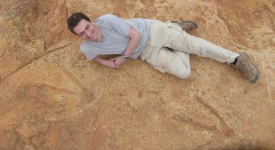 Hatalmas húsevő dinoszauruszt fedeztek fel Afrikában