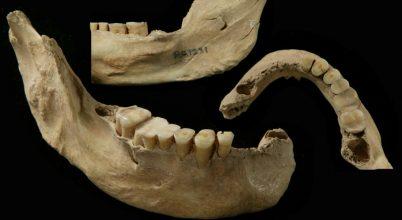 Feltérképezték egy 40 ezer éves ősember genomját