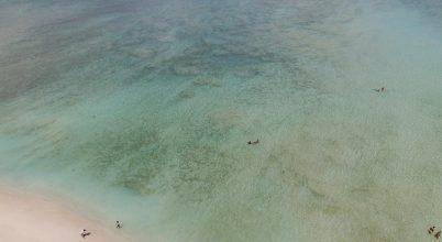 A nap képe: Gili Air halott korallzátonyánál