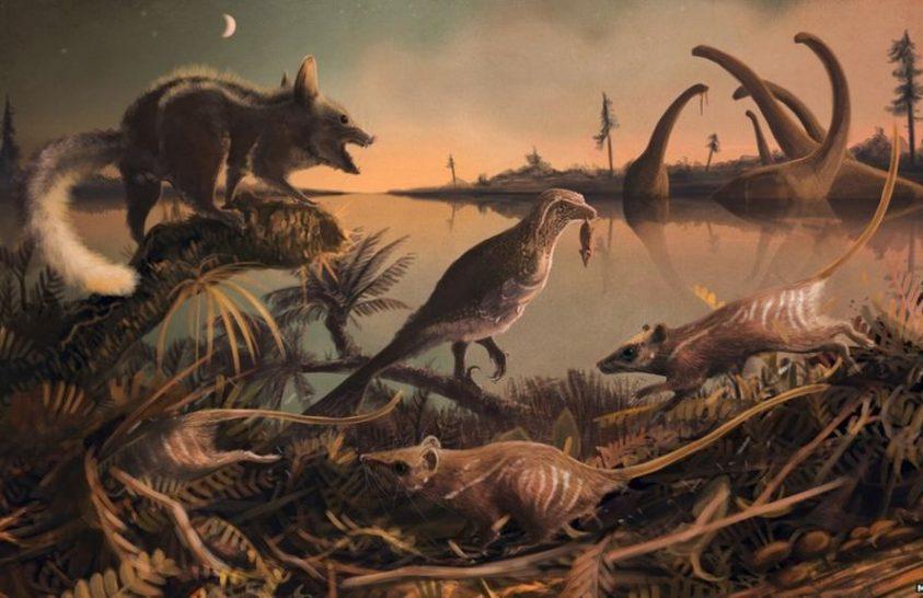 A legkorábbi ősünk került felszínre Angliában