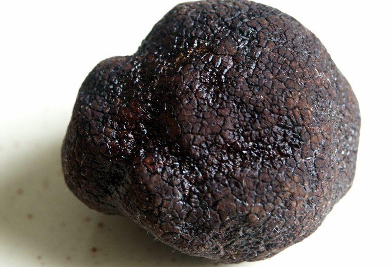 Először termesztettek fekete szarvasgombát az Egyesült Királyságban