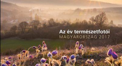 2017 legjobb magyar természetfotói