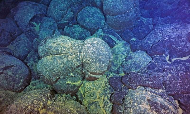Már alacsony oxigénszinten is kialakulhat a komplex élet