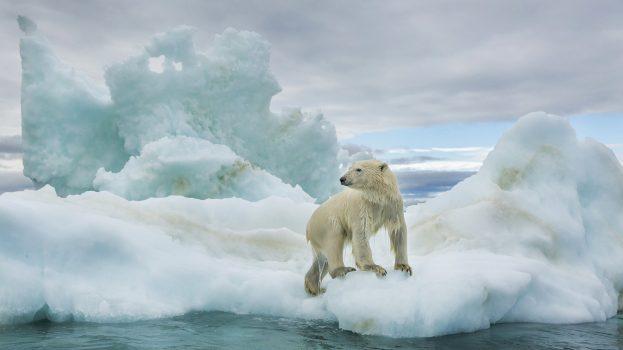 Fogy a jég
