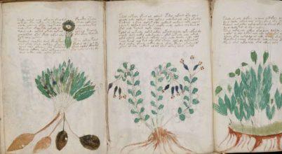 Mesterséges intelligencia majdnem megoldotta egy kézirat rejtélyét