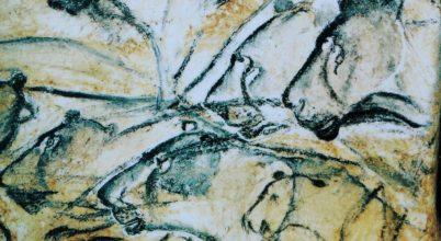 Vadásztechnikája miatt lehetett ügyetlenebb művész a neandervölgyi