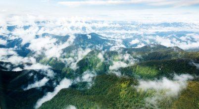 Az erdők és a gyepterületek klímaszerepe