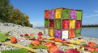 A nap képe: A természet Rubik-kockája
