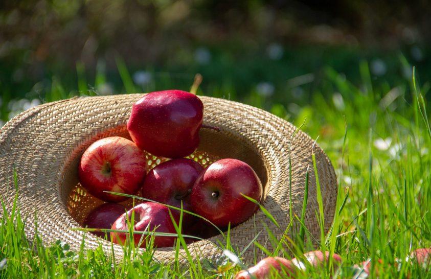A friss gyümölcs a lelki egészségének is kedvez