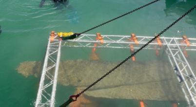 Bronzkori hajót emeltek ki egy tóból Németországban